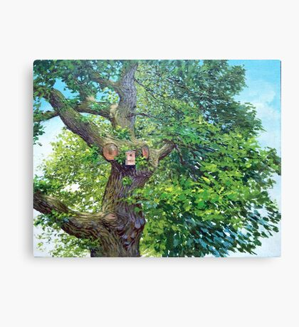 Home tree Canvas Print