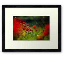 still love poppies Framed Print