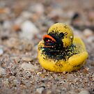 Lonesome Rubber ducky by NicoleBPhotos