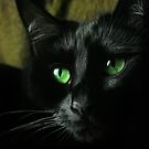 More of Midnight by PorcelainPoet
