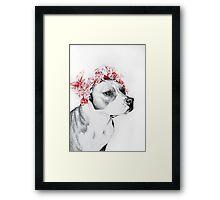Dog crown II Framed Print