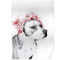 Dog crown II Poster