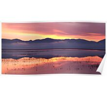 Cerknica lake at dawn Poster