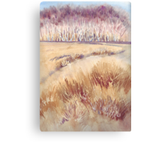 Grasses on Strensall Common Canvas Print