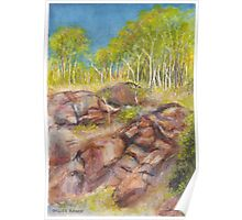 Gillies Range Coloured Boulders in Far North Queensland Poster