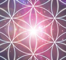 Sacred Geometry: Flower of Life III - Cosmos Sticker