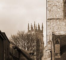Minster View Sepia by Alastair