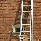 For That You Need a Ladder? by Monnie Ryan
