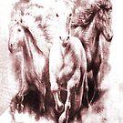 White Equines. by Vitta