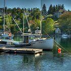 Indian Harbour Nova Scotia by Roxane Bay