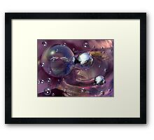 Night of the dolphins Framed Print