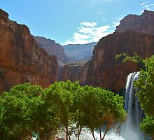 Havasu Falls by ScottishVet