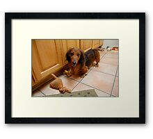Dachshund and Toys Framed Print