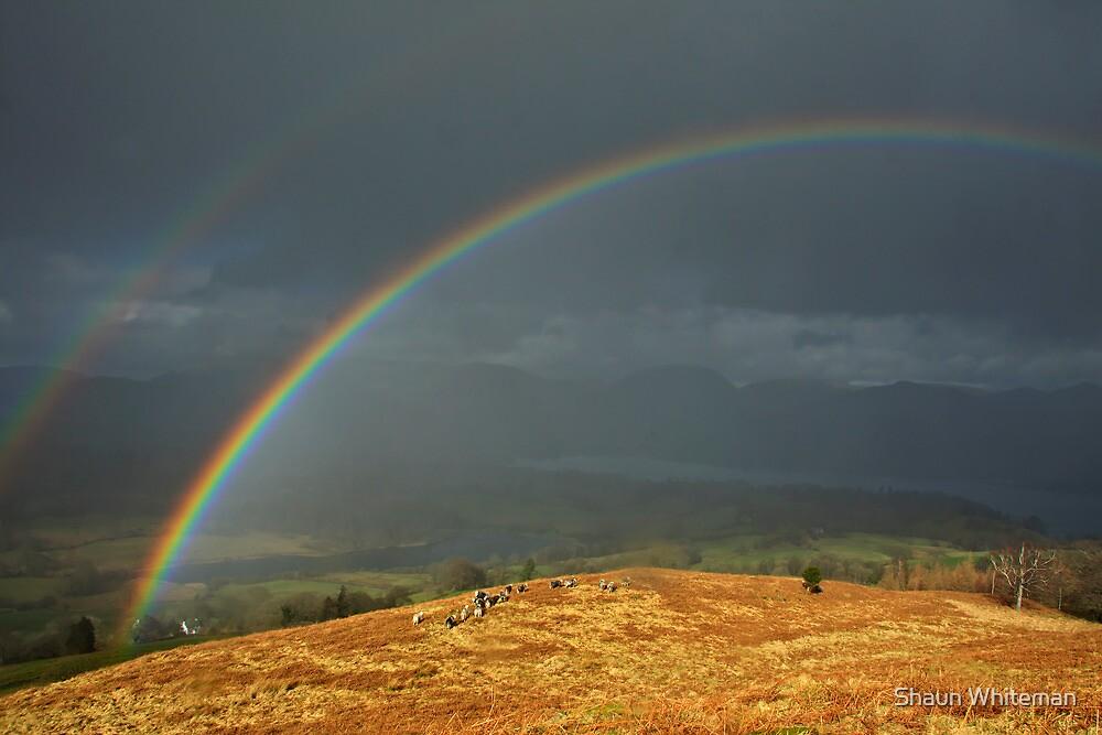 Somewhere over the rainbows! by Shaun Whiteman