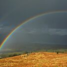 Somewhere over the rainbows! by Shaun Whiteman
