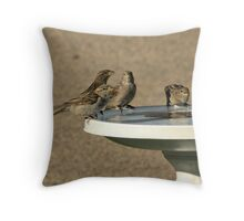 4 infant House Sparrows Throw Pillow