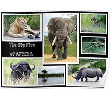 The famous *BIG FIVE* Poster