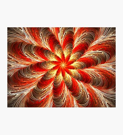 Tropical Spice  Photographic Print