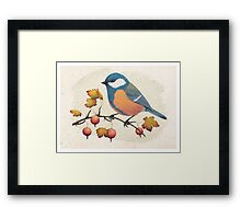 Chickadee on a branch of gooseberries Framed Print