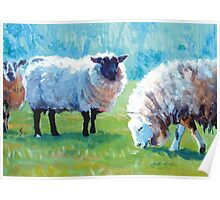 Summer Light - Acrylic Painting of Sheep in Sun Light Poster