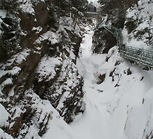 High Falls Gorge by linmarie