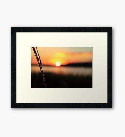 Raw Sunset Framed Print