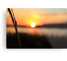 Raw Sunset Metal Print