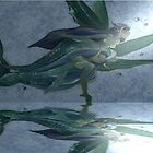 Mermaids II by Margherita Bientinesi