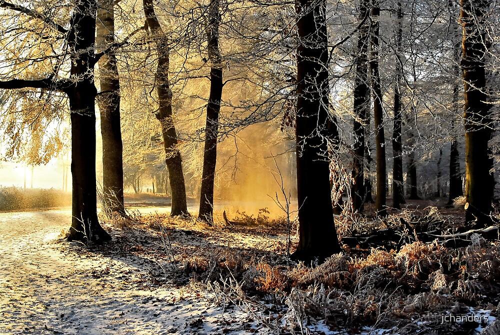 Lightplay on a hoarfrost morning by jchanders