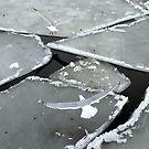The frozen harbour by Alan Mattison
