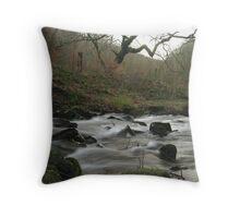 Silent Valley stream Throw Pillow