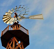 Sagamore Hill Windmill by Nicole Jeffery