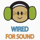 Wired for Sound by iblamemonkeys