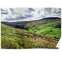 Swaledale, The Dales Poster