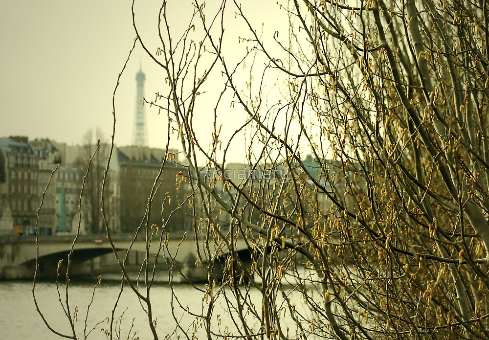 View along the Seine by triciamary