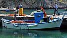 Blue Boat - Puglia Italy by Debbie Pinard