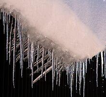 Ice Darts by Vanessa Lalliard