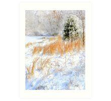 Peaceful Snow Scene Art Print