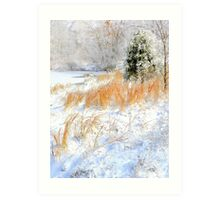 Peaceful Snow Scene Art Print