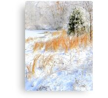 Peaceful Snow Scene Canvas Print
