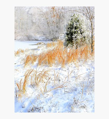 Peaceful Snow Scene Photographic Print