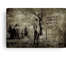 Orange Pickers Wanted Canvas Print
