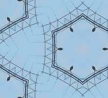 Hexagons of wire by incurablehippie