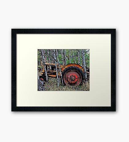 Down on the Farm 70 Framed Print
