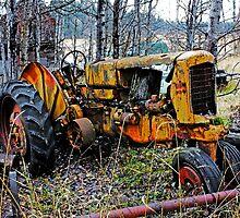 Down on the Farm 75 by Cripplefinger
