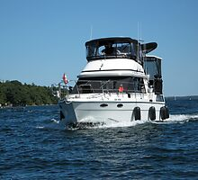 Cruising On The Waters by ✿✿ Bonita ✿✿ ђєℓℓσ