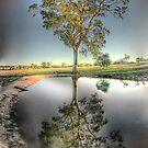 Drought by-gone by Paul Grinzi
