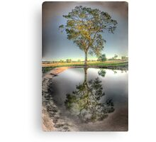 Drought by-gone Canvas Print
