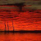 """'Devils Dawn"""" by debsphotos"""