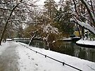 Last snow by vickimec